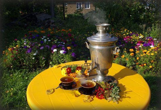 Чай, помогающий похудеть: зеленый, имбирный, с лимоном и другие