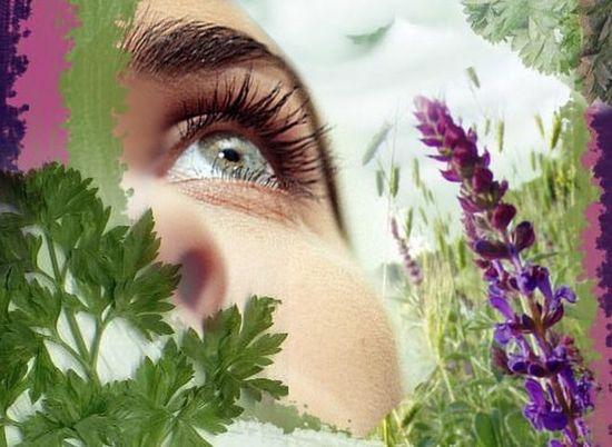 Защита глаз в повседневной жизни
