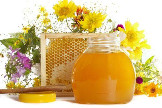 Шлаки в организме и выведение их медом