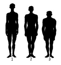 ИДЕАЛЬНАЯ МАССА ТЕЛА. ИМТ - индекс массы тела. Формула и как рассчитать идеальный вес тела