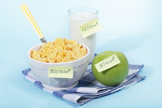 Как считать калории, чтобы похудеть. Таблица и меню
