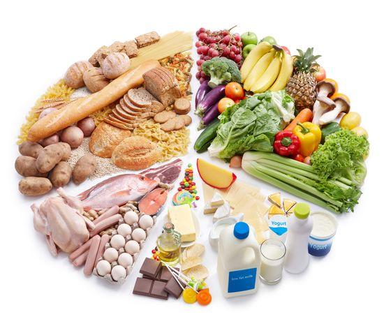 Как составить рацион питания