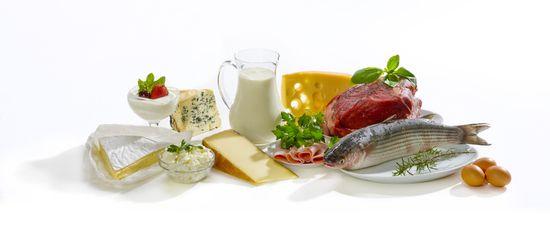 Сколько белков усваивается за 1 прием пищи